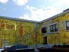 blu-peinture-murale-graffiti-newyork