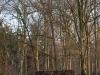 Piet-Hein-Eek-cabana-estudio-Hans-Liber-house-office-2.jpg