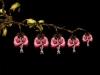 cecelia-webber-bleeding-heart