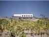 centro-tematico-del-vino-torvizcon-2