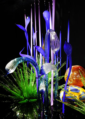 nica-krauer-chihuly-11_m