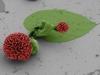microscopic-crystal-flower-2