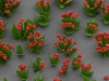 microscopic-crystal-flower-4