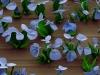 microscopic-crystal-flower-6