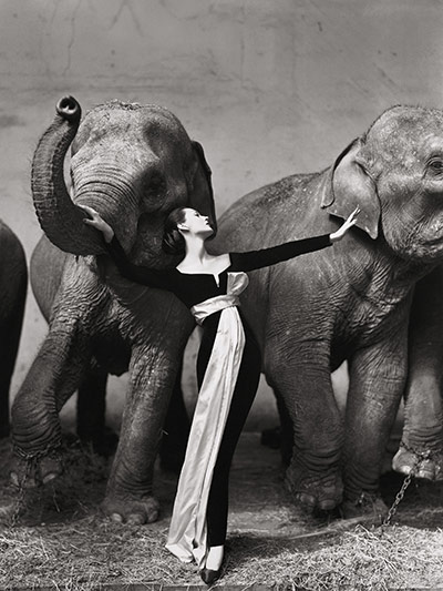 Richard Avedon-dovima-con-elefantes-