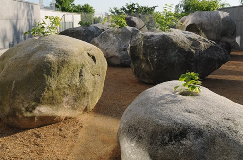 Jardin de piedras Andy Goldsworthy Aryse