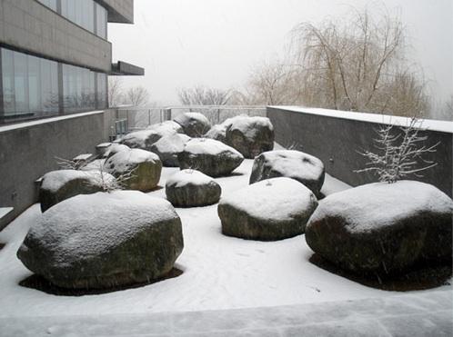 jardin_piedras_8