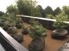 jardin-piedras_3