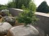 jardin-piedras_9