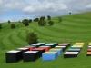 leon-van-den-eijkel-red-cloud-confrontation-in-landscape-gibbs-farm-1