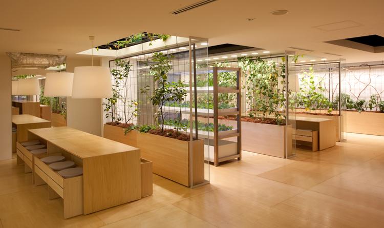 jardines verticales oficina