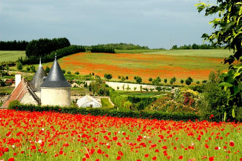 jardin-de-francia