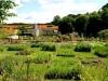 jardins-du-chateau-de-la-chatonniere_4