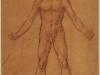desnudo-masculino-y-un-estudio-parcial-de-la-pierna-izquierda