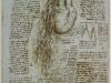 un-bosquejo-del-corazon-y-grandes-vasos-1511-13
