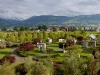 tree-museum-enea-garden-design