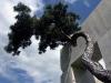 tree_museum_1