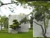 tree_museum_6
