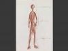 dibujos-eroticos-de-jorge-oteiza-14