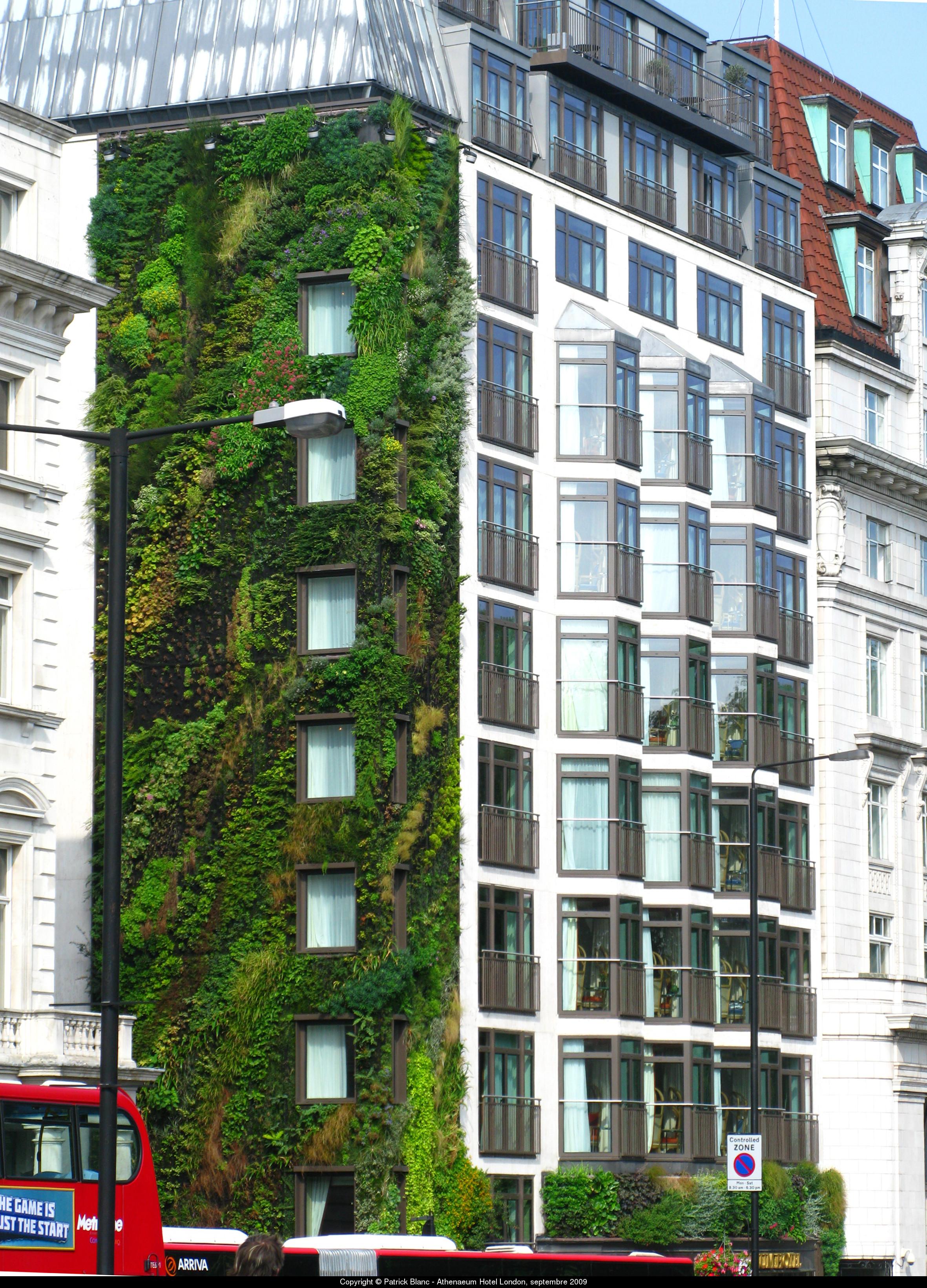 Patrick blanc jardines verticales aryse for Plantas utilizadas en jardines verticales