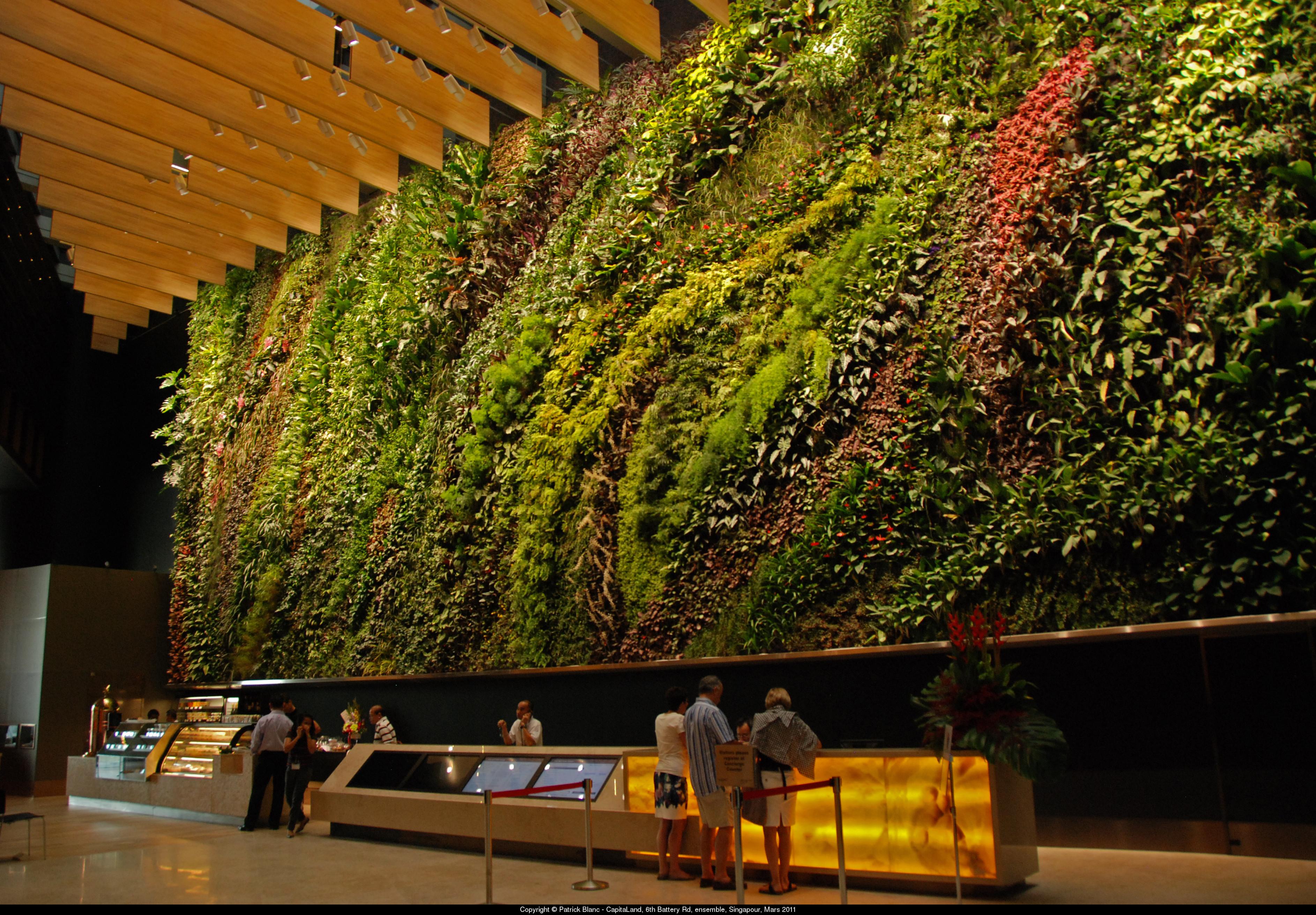 Patrick blanc jardines verticales aryse for Jardin vertical reciclado