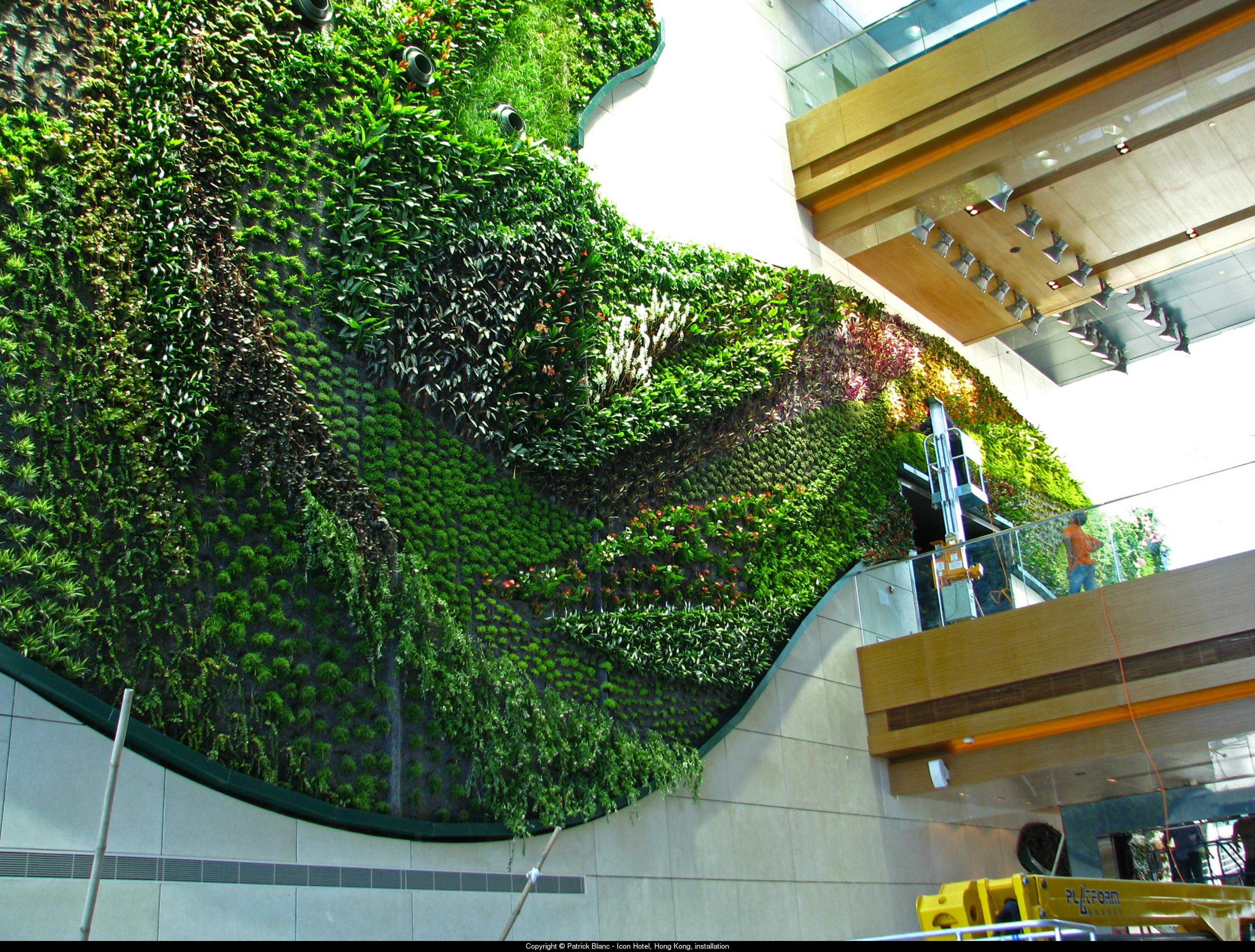 Patrick blanc jardines verticales aryse for Muros y fachadas verdes jardines verticales