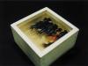 riusuke_fukahori_-goldfish_1