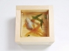 riusuke_fukahori_-goldfish_3
