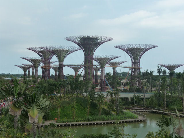 Jardines verticales: Supertrees + Gardens by the Bay