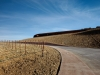 antinori-winery-archea-associati_8