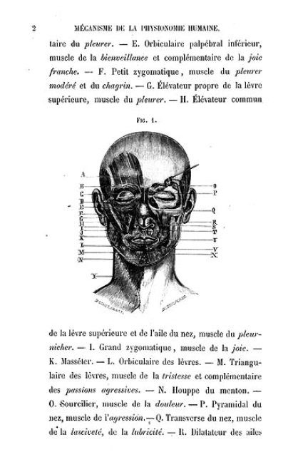 Mecanisme-Duchenne