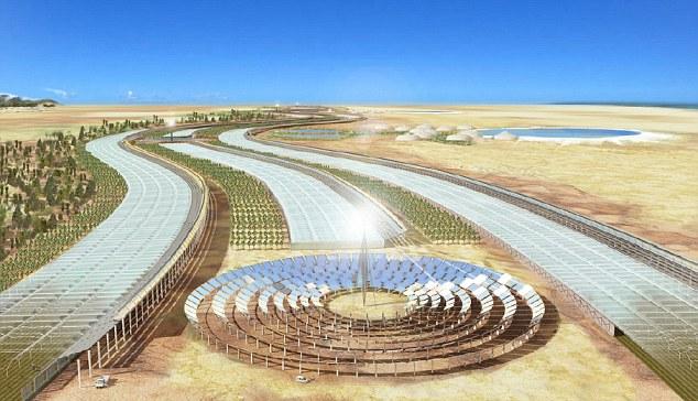 Proyecto Bosque del Sahara: comienza la construcción de la primera planta piloto en Doha, Qatar.