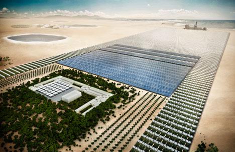 bosque-sahara-reforestacion-proyecto