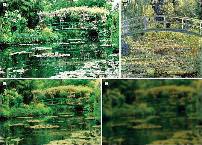 Monet-vision