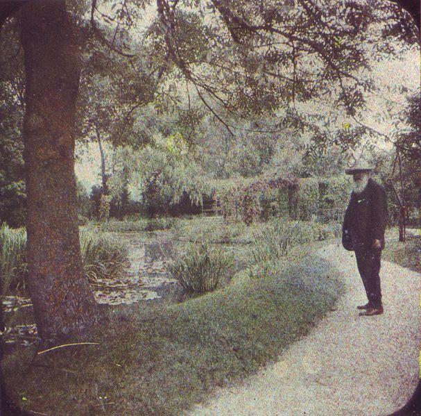 Las cataratas de Monet