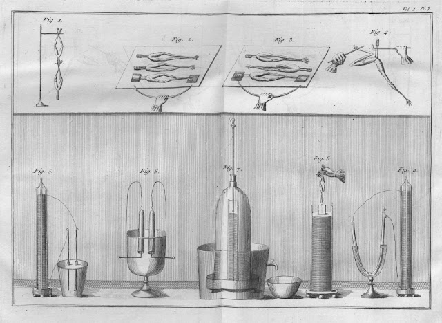 Experiments_with_frogs_legs_other_devices_Essai_theorique_et_experimental_sur_le_galvanisme_1804