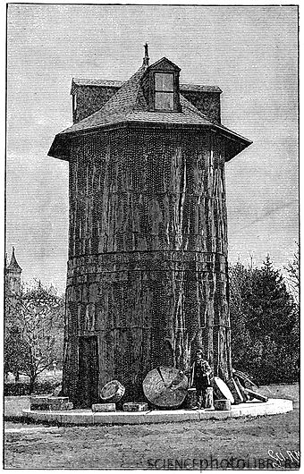 Redwood_tree_house_19th_century