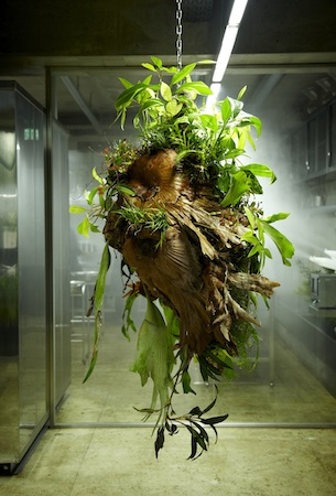 escultura_ botanica_Makoto_Azuma_2