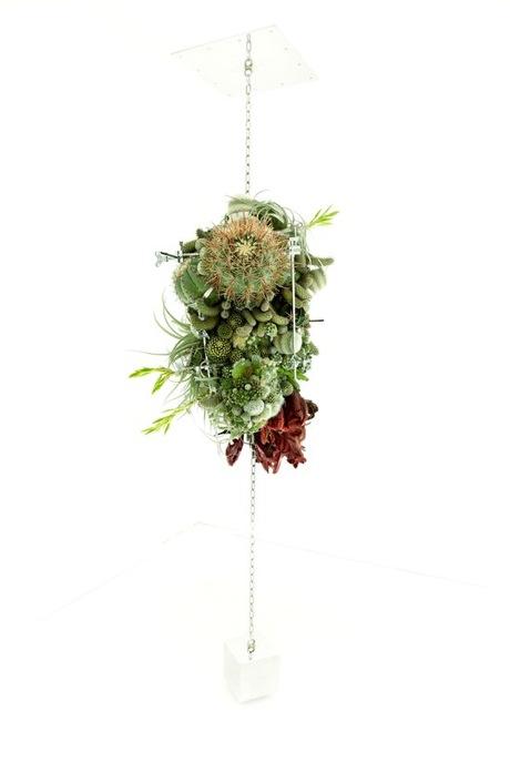 escultura_botanica_Makoto_Azuma_3