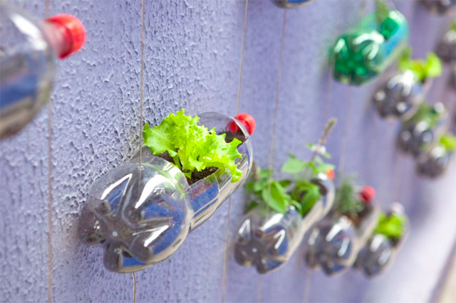 jardin_vertical_rosenbaum_7