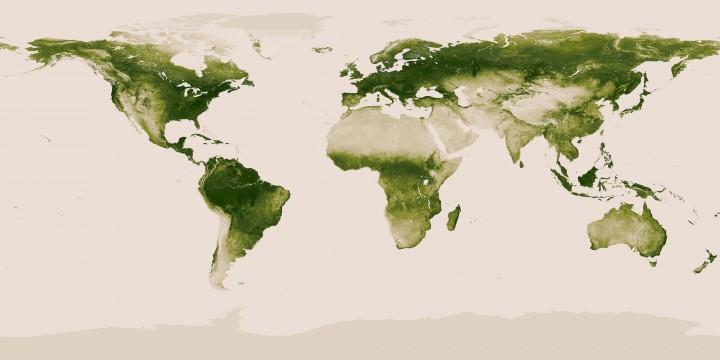 El planeta verde: Mapa de vegetación terrestre