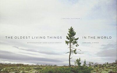 Rachel Sussman / Los organismos vivos más antiguos del mundo