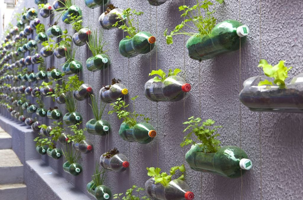 Jardín vertical construido con botellas recicladas
